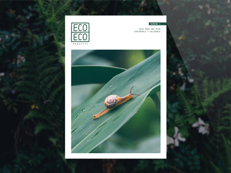 Diseño editorial para Eco Eco Magazine